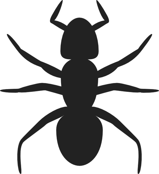 Ant clip art Free vector in Open office drawing svg ( .svg.