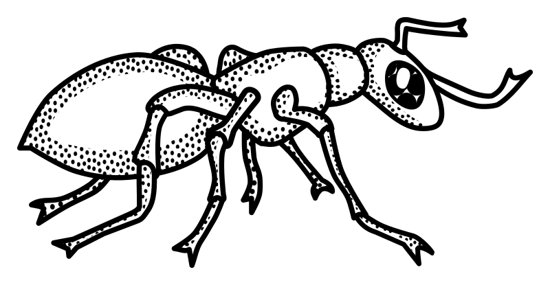 Ant clipart outline, Ant outline Transparent FREE for.