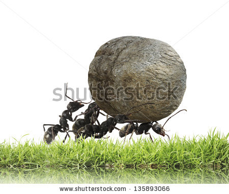 Ants Teamwork Stock Images, Royalty.