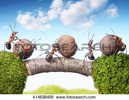 Stock Image of team of ants rolling stones on bridge, teamwork.