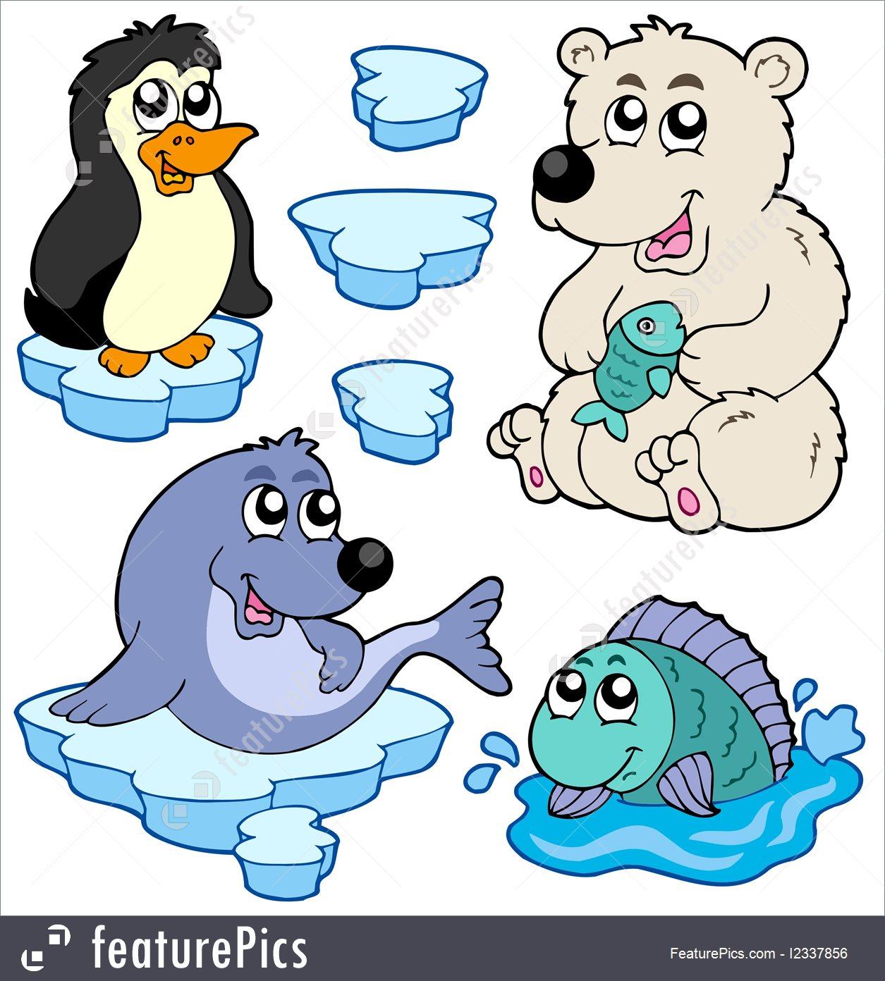 Antarctic animals clipart 4 » Clipart Station.