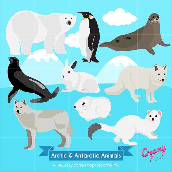 Antarctic animals clipart.