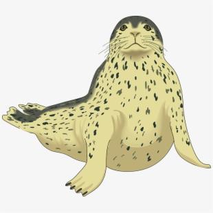 Seal clipart animal antarctic, Seal animal antarctic.