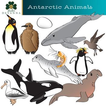 Antarctic Animals Clip Art.
