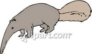 Cute anteater clipart.