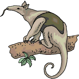 Ant eater clipart.