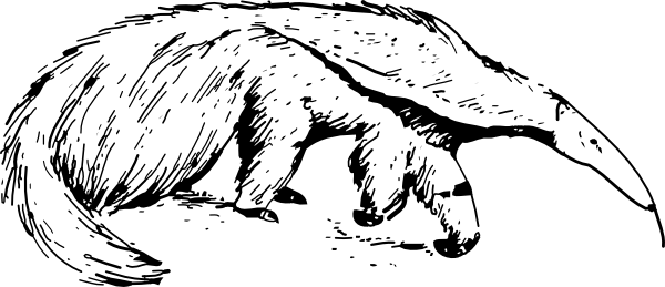 Anteater Clip Art at Clker.com.