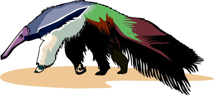 Free Anteater Clipart.