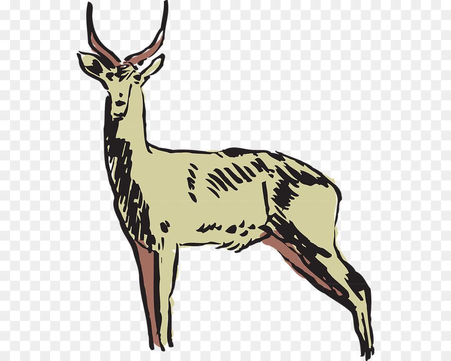 Animal Cartoon clipart.