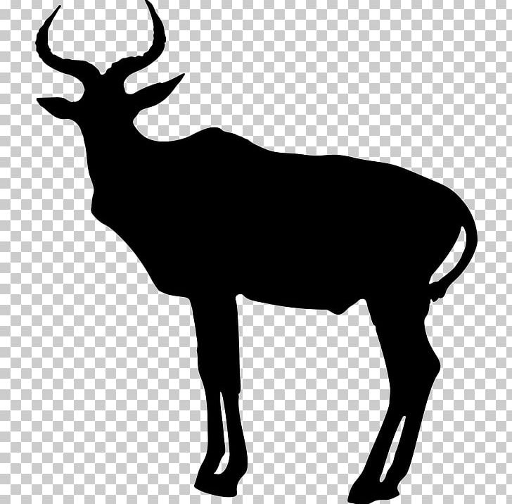 Antelope Pronghorn Animal Silhouettes PNG, Clipart, Animal.