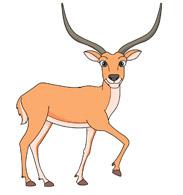 Antelope clipart #20