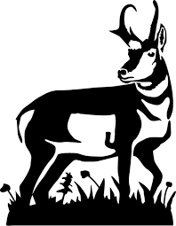 Image result for antelope clipart black and white.