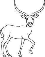 Antelope Black White Clipart.