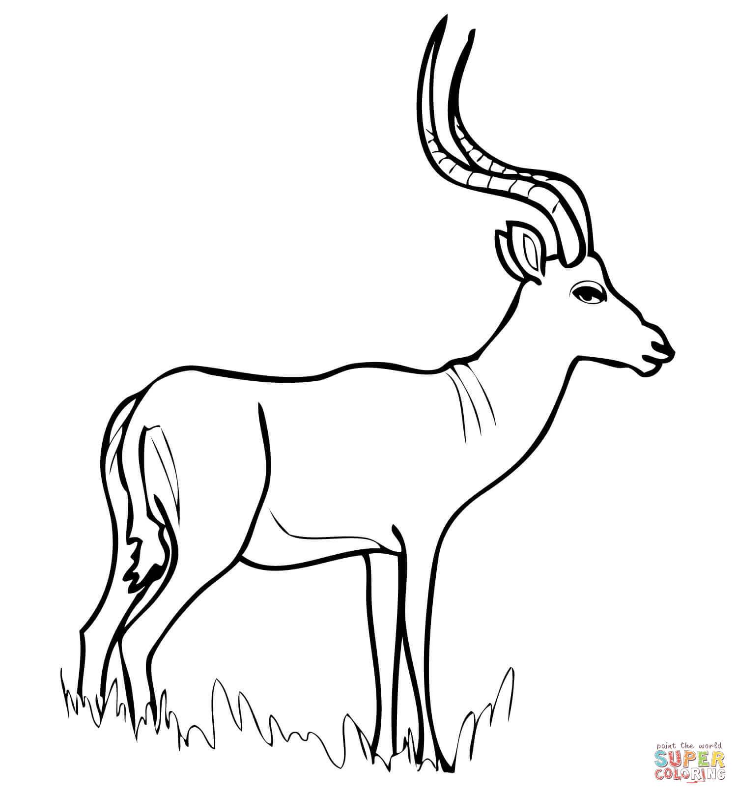 Antelope Head Clipart.
