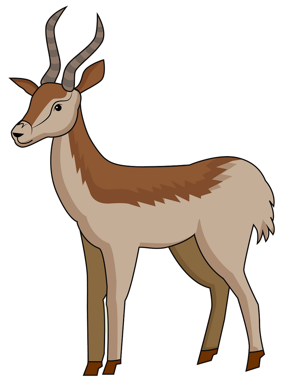 Antelope clipart. Free download..