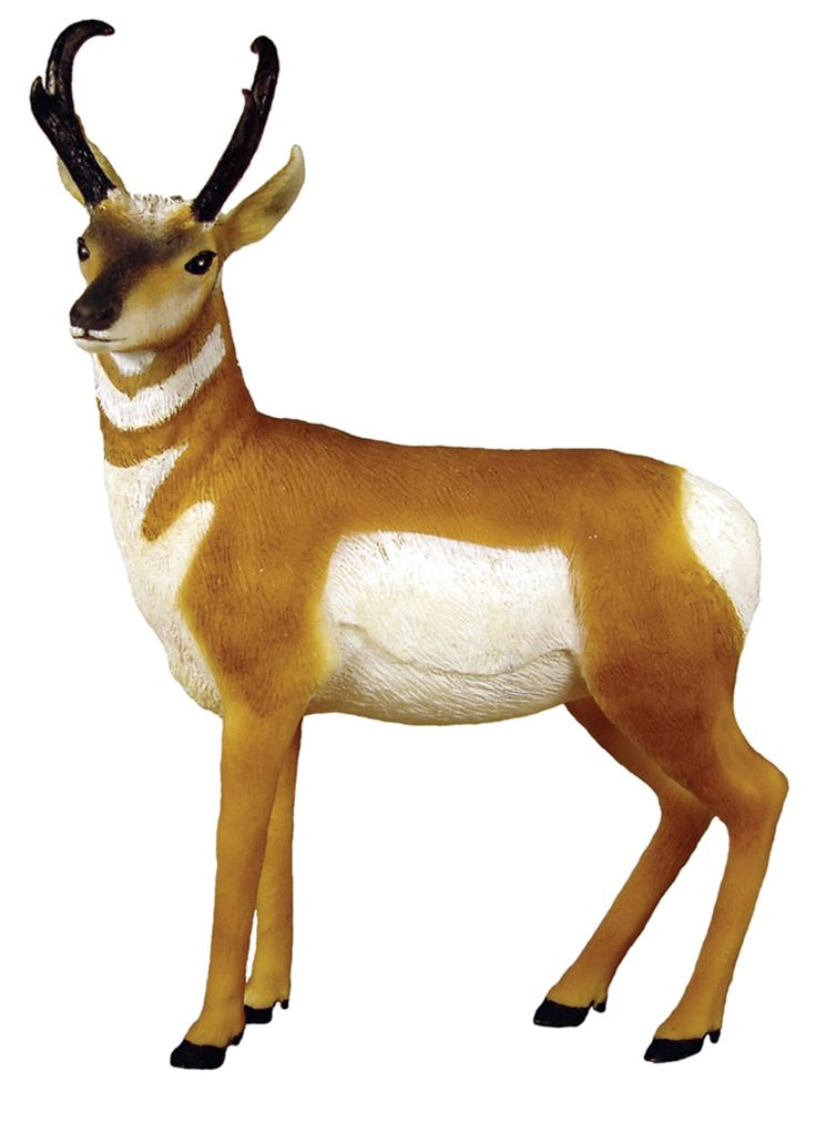 Free Antelope Clipart.