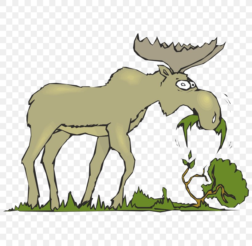 Moose Eating Cattle Mammal Clip Art, PNG, 800x800px, Moose.