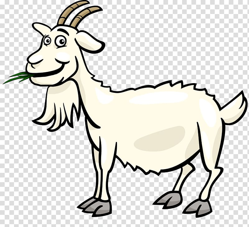 White goat eating grass illustration, Fainting goat Black.