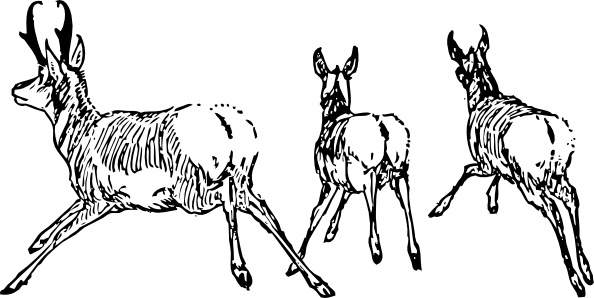 Running Antelope clip art Free vector in Open office drawing.