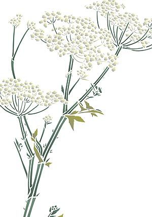 1000+ images about 12) Cow parsley patterns on Pinterest.