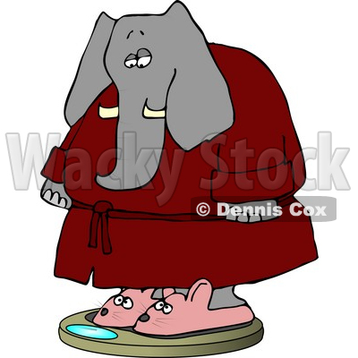 Elephant Wearing Bathrobe and Mouse Slippers While Weighting In On.