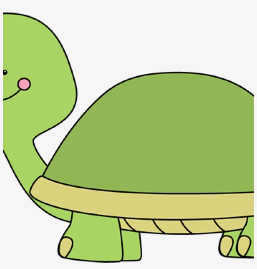 Cute Turtle Clip Art Turtle Clip Art Turtle Images.