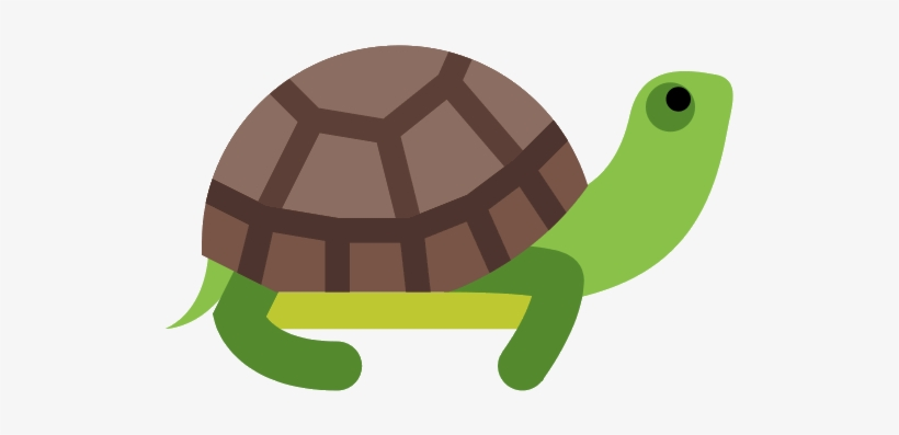 Turtle Png Photos.