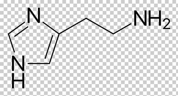 Antihistamine Histamine receptor Histamine H1 receptor.