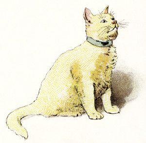 yellow cat clipart, vintage cat image, kitten clip art.