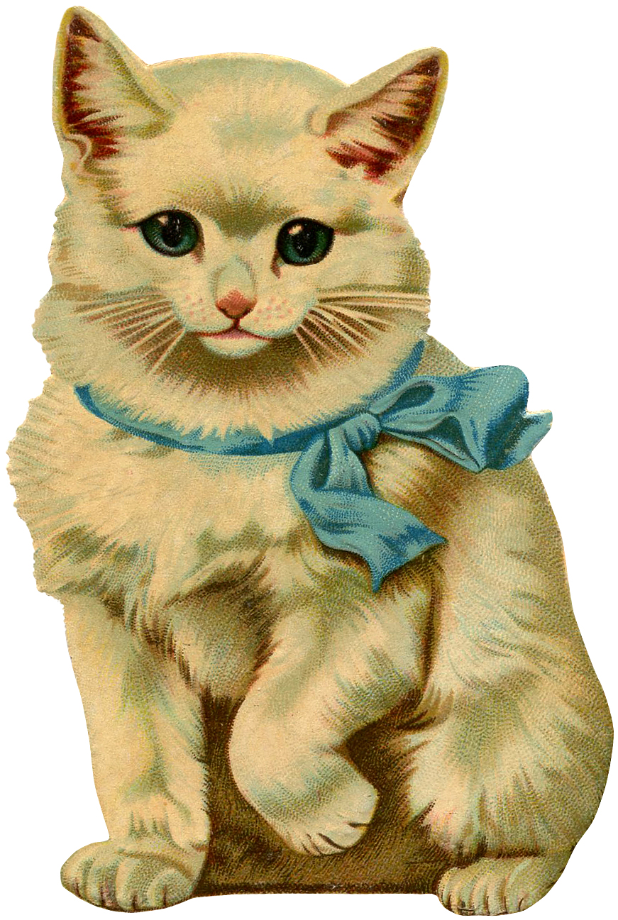 12 Beautiful Vintage Kitten and Cat Pictures!.