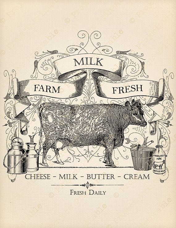 Farm Fresh Milk Sign.