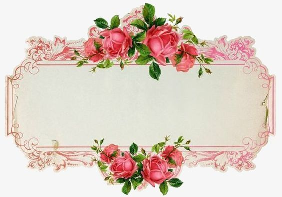 Antique rose blank border clipart Transparent pictures on F.