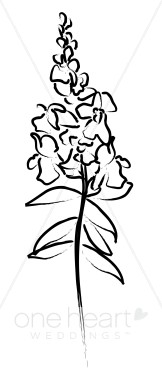 Gallery For > Snapdragon Clipart.