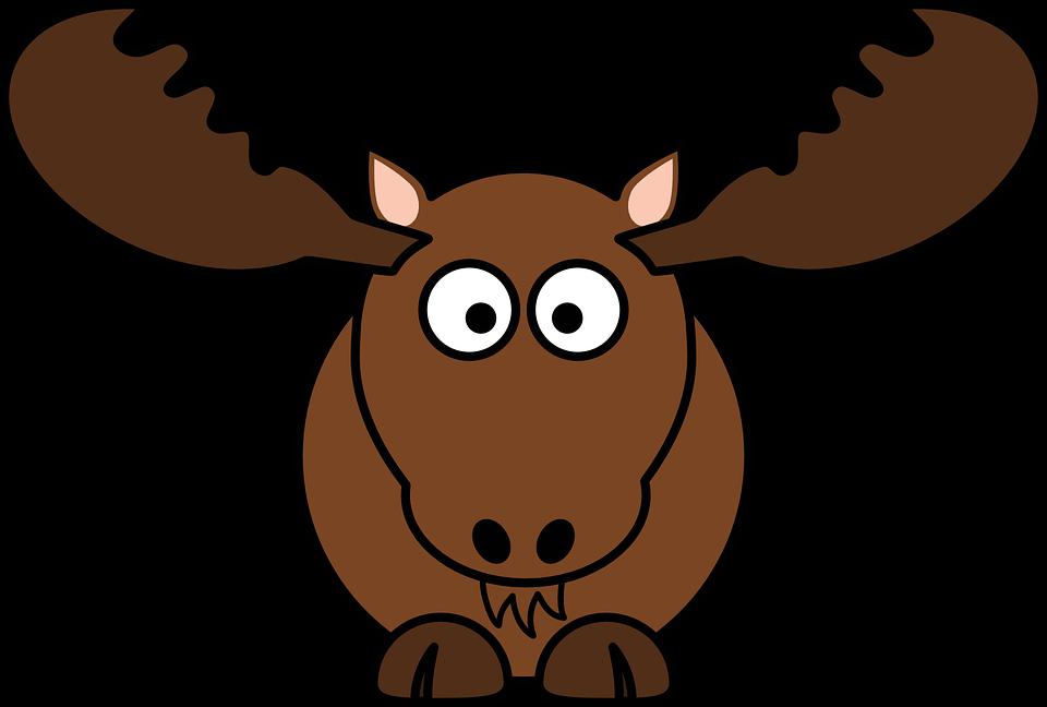 Free photo Wild Hirsch Nature Antler Antler Carrier Red Deer.