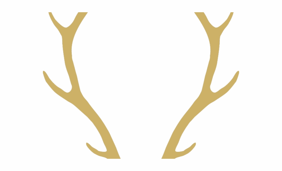 Free Antlers Transparent, Download Free Clip Art, Free Clip.
