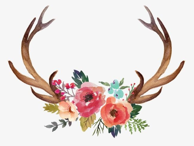 Horn Flowers, Hand Painted, Horn, Flowers PNG Transparent.