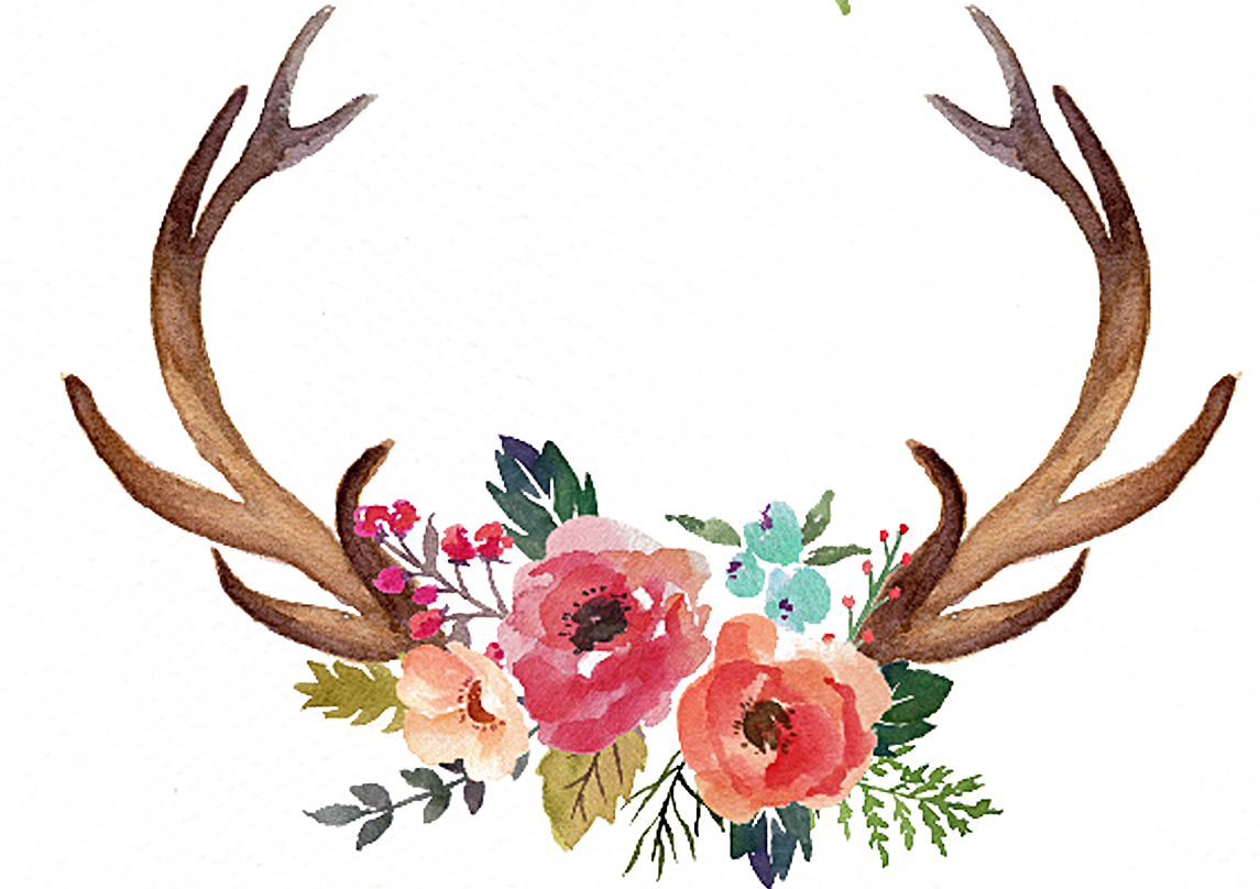 Deer Antler Flower Moose Clip art.