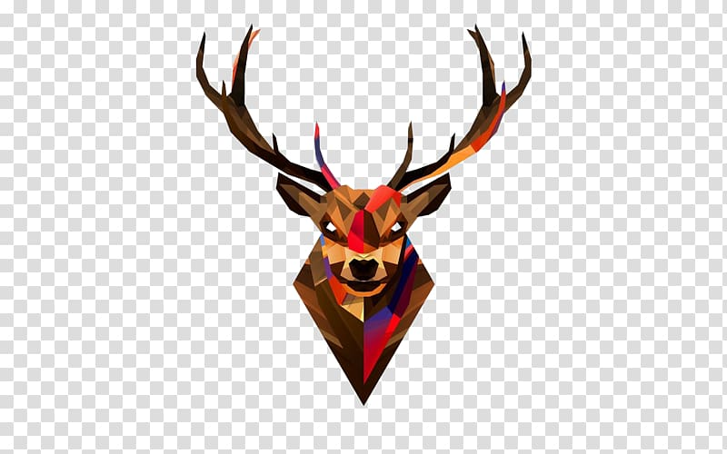 Multicolored reindeer , Red deer Head Antler , Deer Head.