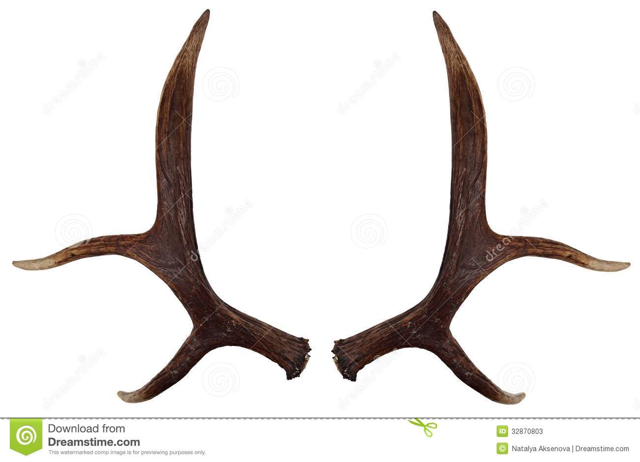 Antlers clipart Clipground
