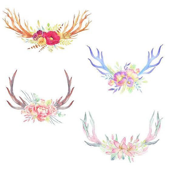 Watercolor antlers, watercolor feathers, boho chic clipart.