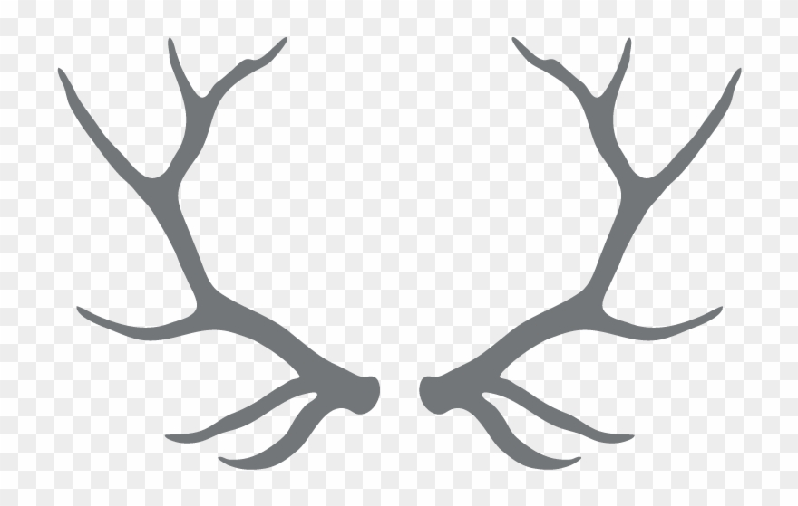 Clipart Free Download Antlers Transparent Black And.