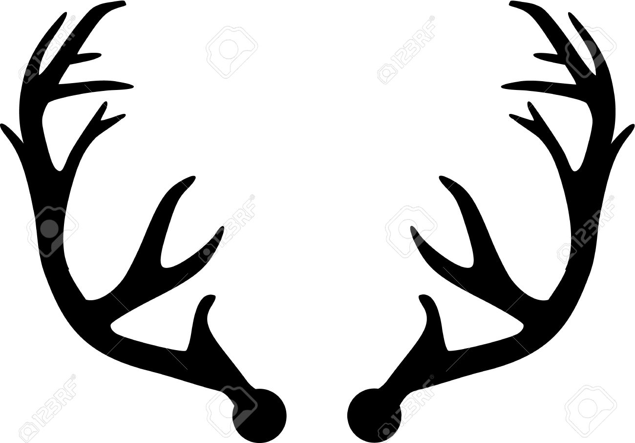 Deer Antler.