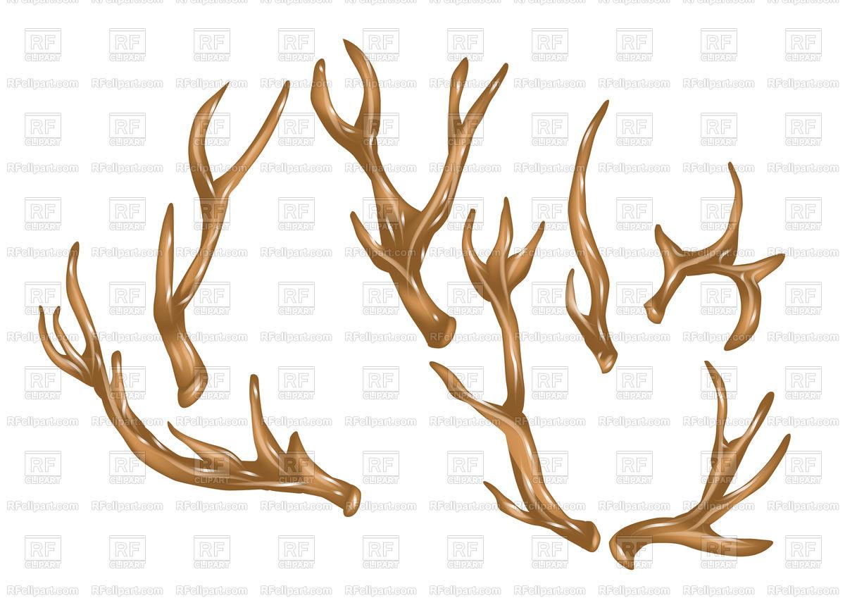 Antlers Stock Vector Image.