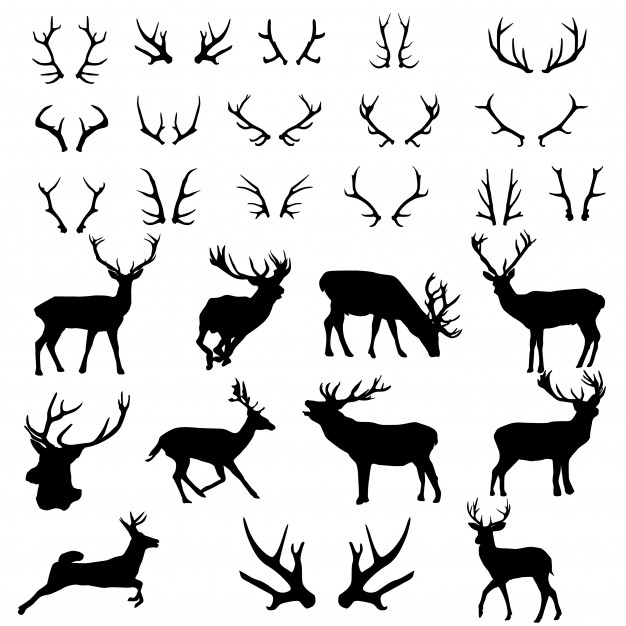 Deer antlers forest animnal silhouette clip art Vector.