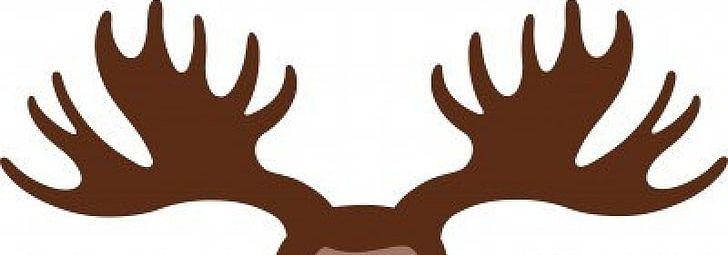Moose Deer Antler Elk PNG, Clipart, Antler, Antlers Cliparts, Clip.