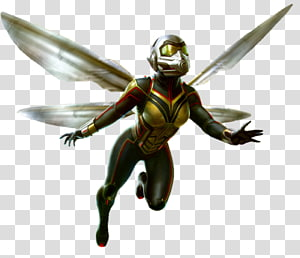 Wasp PNG clipart images free download.