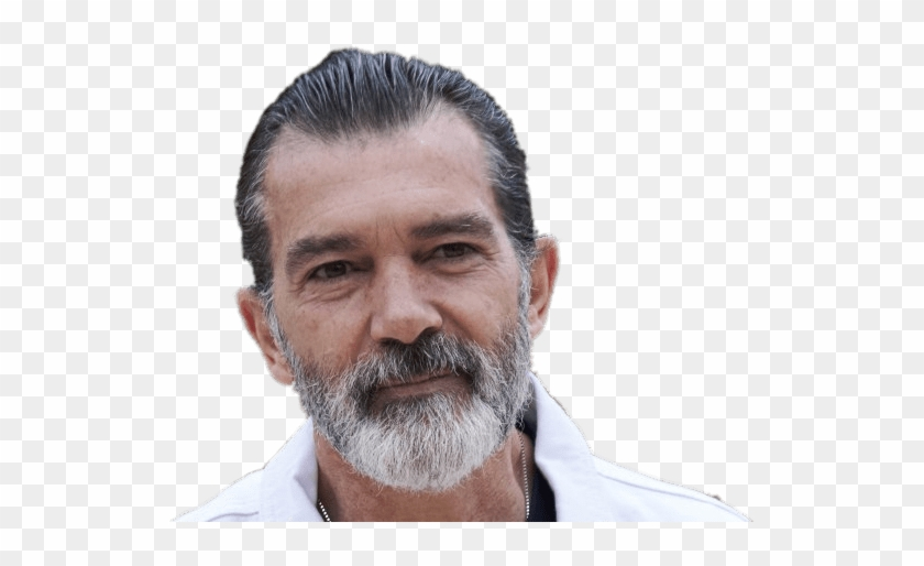 Antonio Banderas With Beard.