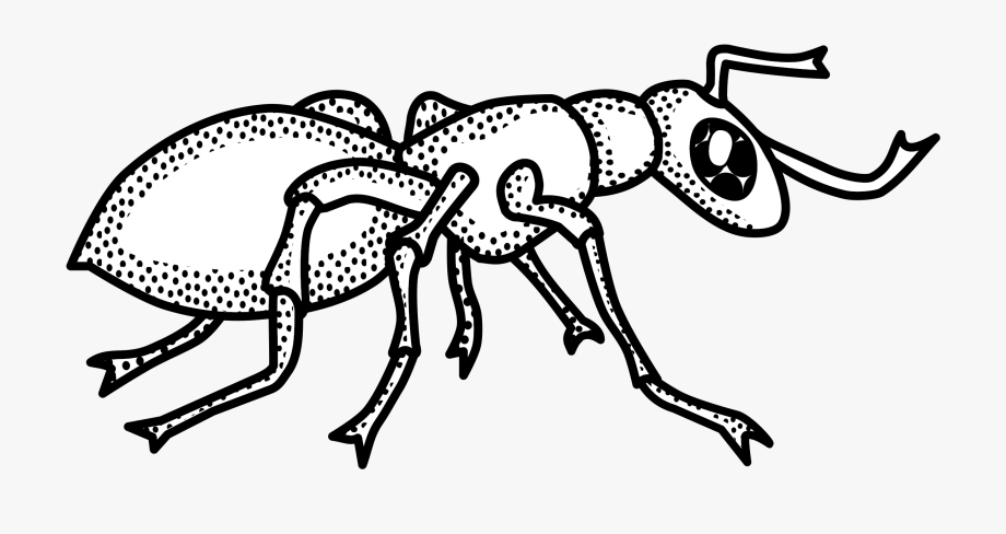 Ants clipart outline clipart images gallery for free.