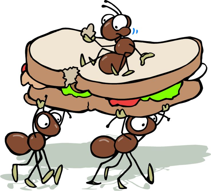 Free Ant Eating Cliparts, Download Free Clip Art, Free Clip.