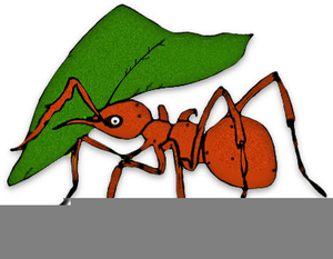 Free Ant Clipart Borders.